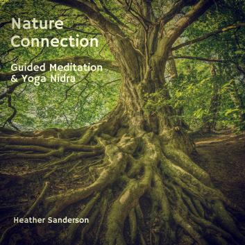 Nature Connection Album