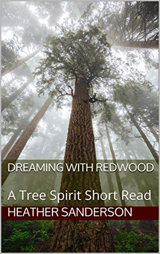 dreamingwithredwood