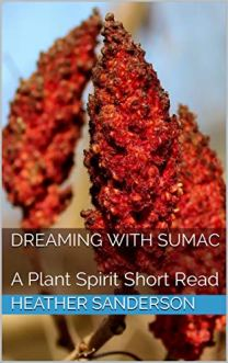 DreamingwithSumac