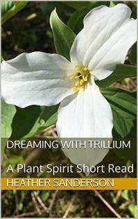 DreamingwithTrillium
