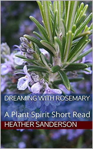 dreamingwithrosemary